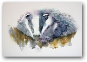 Mr Badger  - click to visit artists gallery ->