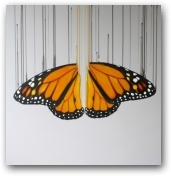 The Monarch  - click to visit artists gallery ->