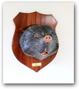 Mr Mole  - click to visit artists gallery ->