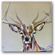 Rufus  - click to visit artists gallery ->