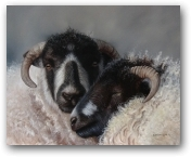 Close Companions  - click to visit artists gallery ->