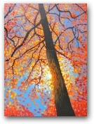 Autumn Gold  - click to visit artists gallery ->